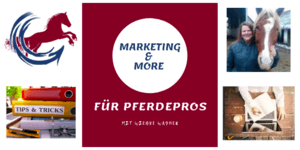Erfolgreich sein mit Marketing & More, dem Marketingkurs für Pferdeprofis