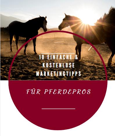 Marketingtipps für Pferdepros
