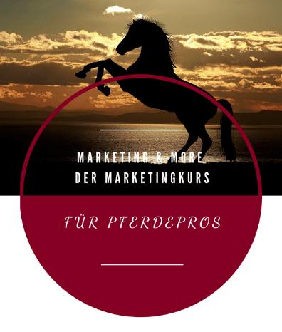 Mehr Kunden für dein Pferdebusiness